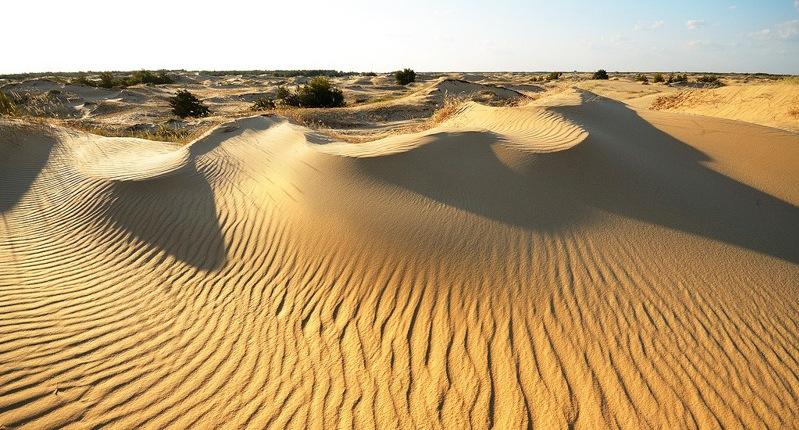 Горожанам предлагают экзотический экстрим в украинской пустыне. Регистрация до 9 сентября!