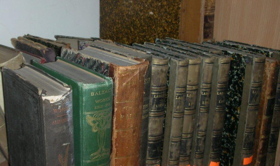 Кино в библиотеке Днепра: библиотекари из кожи вон лезут, чтобы популяризировать чтение