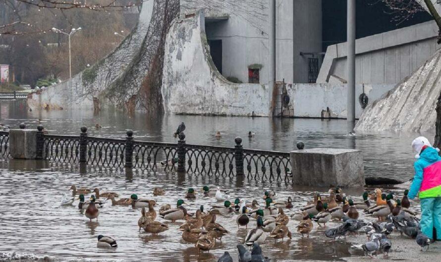 «Здесь будет город-парк». Депутаты горсовета Днепра делили деньги между парками города